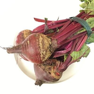 VEG【蔬菜】新鲜紫甜菜 ~1把