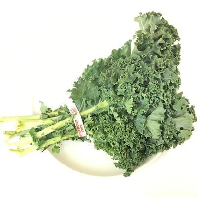 VEG【蔬菜】甘蓝菜 ~1把