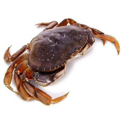 SEAF【海鲜】加州大蟹 ~2lbs