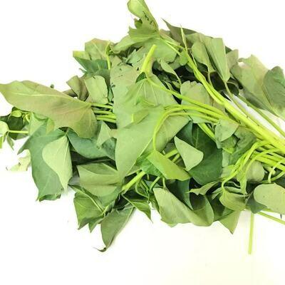 VEG【蔬菜】地瓜叶 ~1份