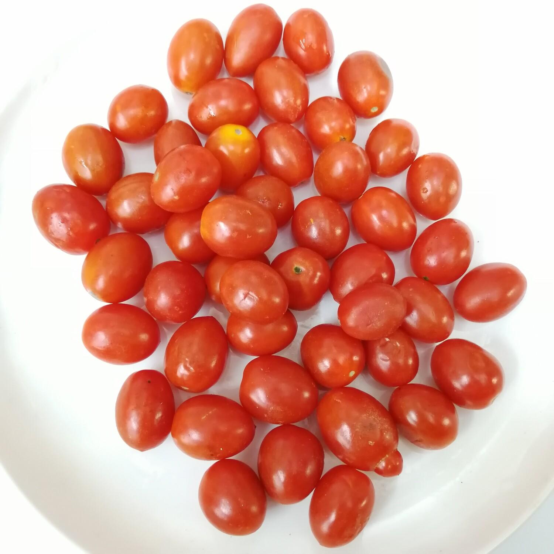 VEG【蔬菜】盒装小番茄 ~约0.6lbs