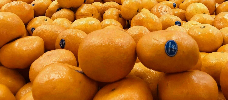 蜜柑桔 ~1lb Tangerine Honey ~1.3lb