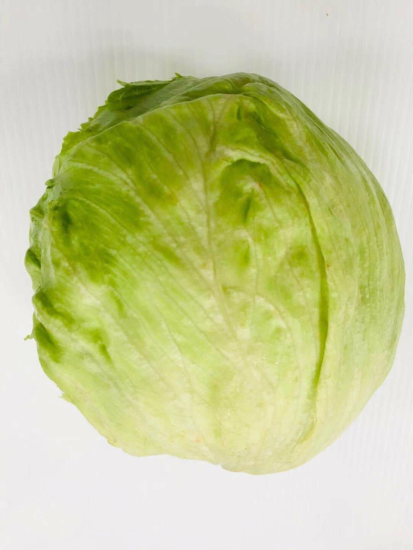 VEG【蔬菜】圆生菜 1pc