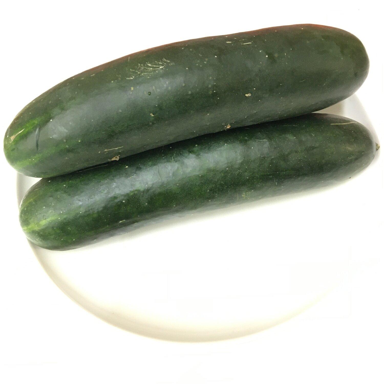 VEG【蔬菜】美国黄瓜 ~约2lbs