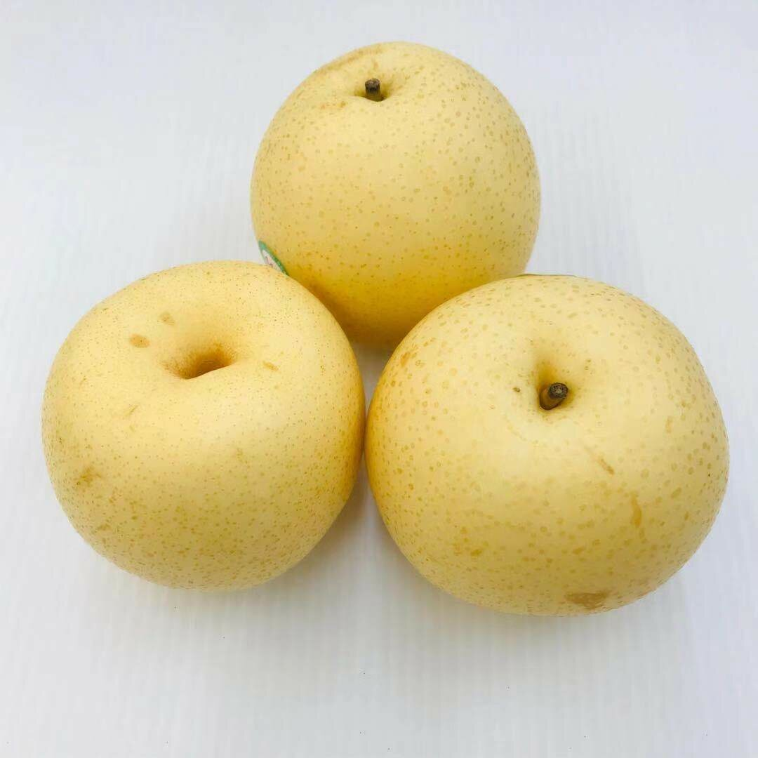 FRUI【水果】水晶梨3个 ~约1.8lbs