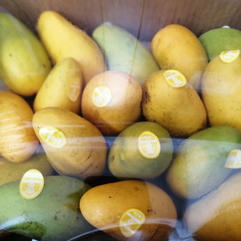 FRUI【水果】象牙芒果1箱