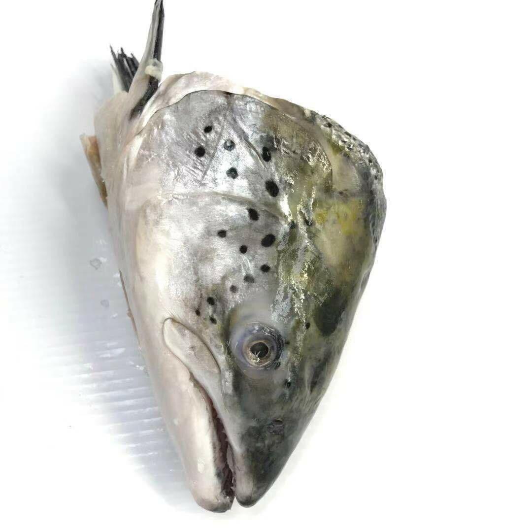 SEAF【海鲜】三文鱼头 ~2lbs