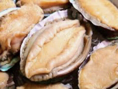 鲜鲍鱼 Fresh Abalone ~5pcs/bag