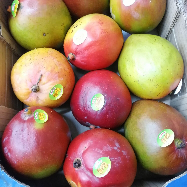 圆芒果1 箱 Mango~1 Box