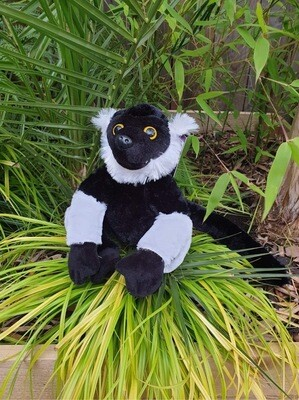 Black And White Ruff Lemur