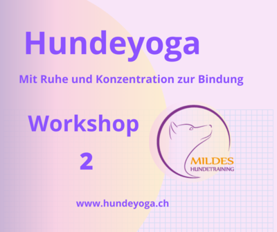 Hundeyoga Workshop 2 P0008