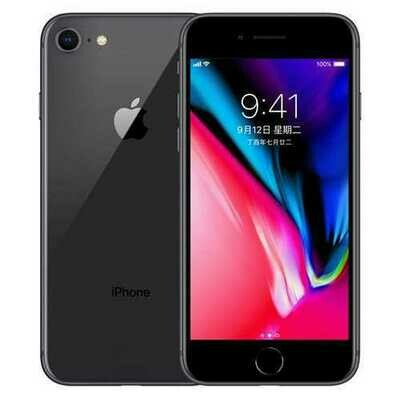 Apple iPhone 8 12MP+7MP Camera 4.7-Inch Screen Hexa-core IOS 3D Touch ID LTE Fingerprint Phone with Euro Plug Adapter Deep gray_64GB