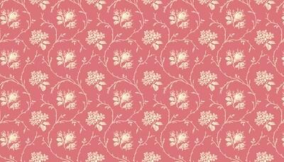 Andover Mayflower - Vine on Rose