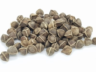 辣木籽 100gm India Moringa Seeds