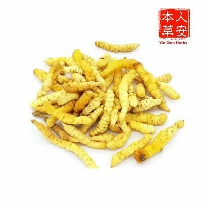 广西虫草 100gm GuangXi Cordyceps