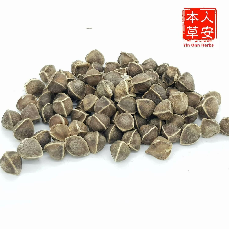 辣木籽 100gm India Moringa Seeds
