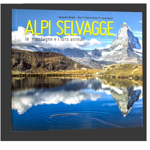 """Beno, Alessandra Morgillo, Roberto Moiola e Jacopo Rigotti, """"Alpi Selvagge"""", Beno Editore, Sondrio 2015"""