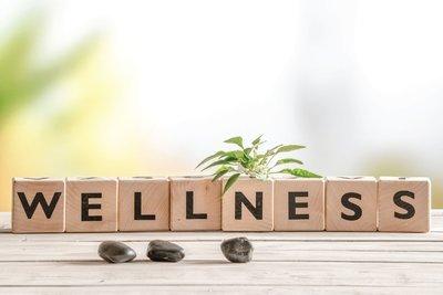 12 mois Wellness