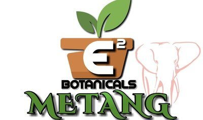 Metang