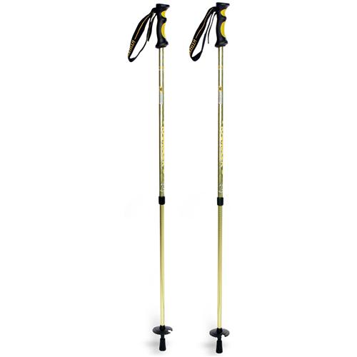 Trekking Pole - Kelty or Similar