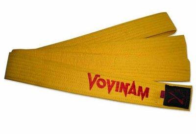 Yellow Vovinam Viet Vo Dao belt