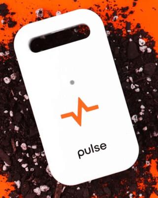 Pulse 1 Monitor
