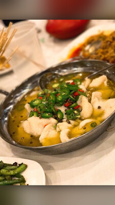 ZWCD【滋味成都】藤椒鱼 Boiled Fish with Green Pepper Sauce (周二休息,晚餐不配饭)