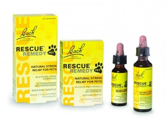 Bach Flowers Rescue Remedy For Pet