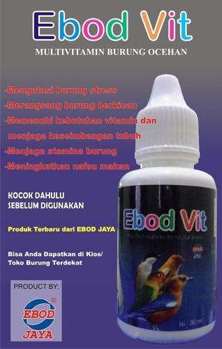 Ebod Vit