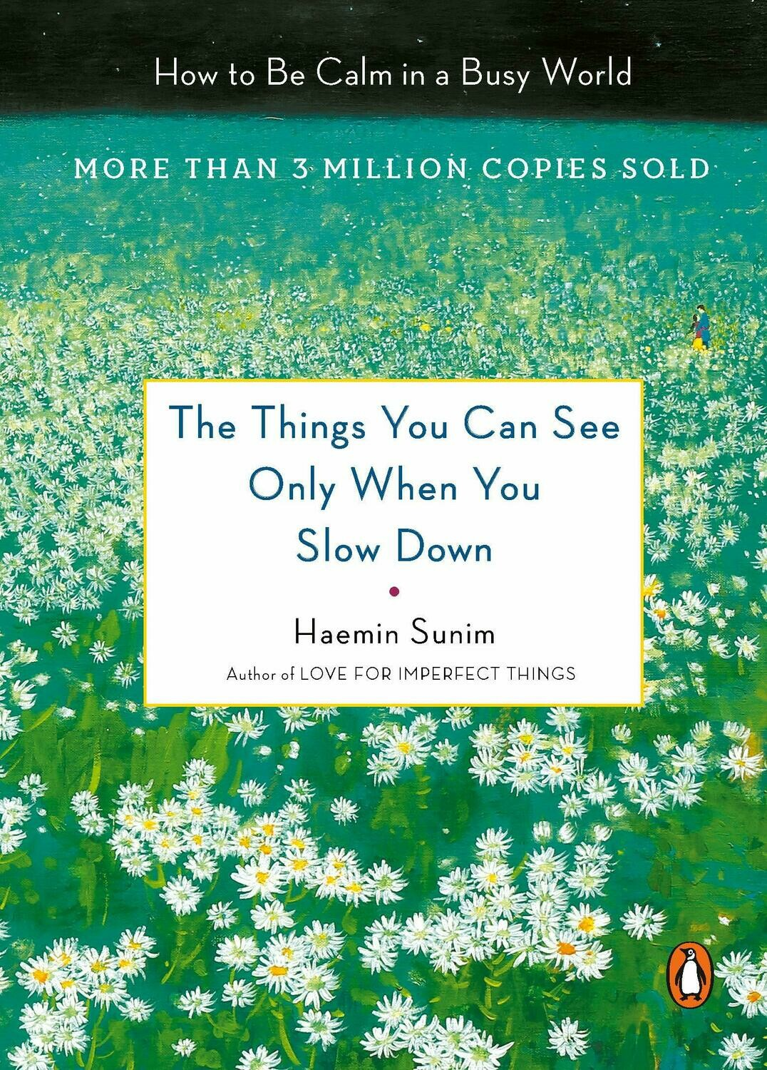 The Things You Can See Only When You Slow Down: How to Be Calm in a Busy World Hardcover