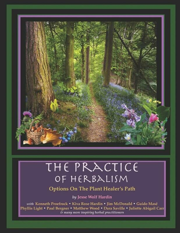 The Practice of Herbalism: Options on the Plant Healer's Path Paperback – October 10, 2018