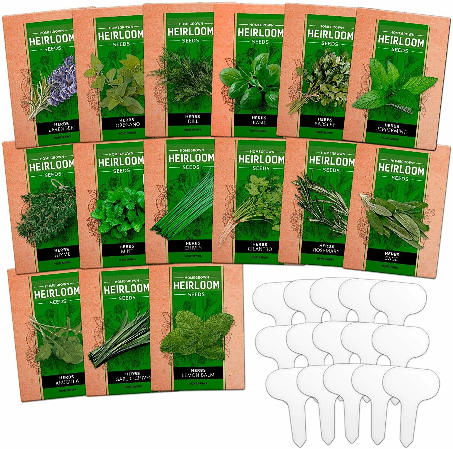 4500 Plus Seeds for Planting for Indoor or Outdoor Herbs Garden. 5 Culinary Herb Seed Vault - Heirloom and Non GMO
