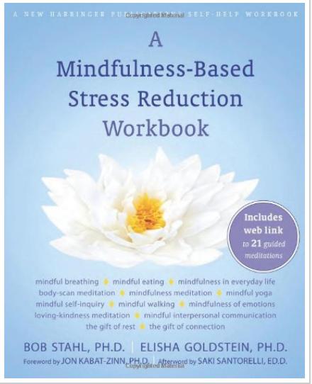 A Mindfulness-Based Stress Reduction Workbook Bob Stahl PhD, Elisha Goldstein PhD, Saki Santorelli EdD MA, Jon Kabat-Zinn PhD Ebook pdf