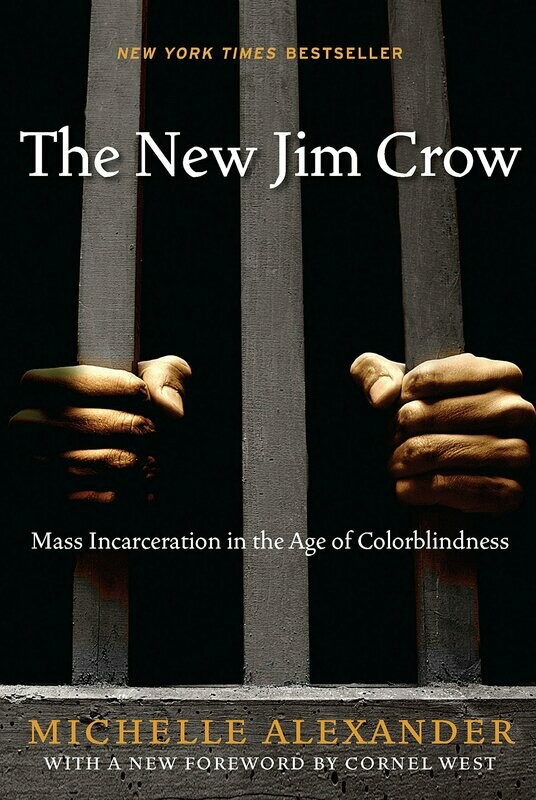 The New Jim Crow: Mass Incarceration in the Age of Colorblindness Hardcover – January 5, 2010