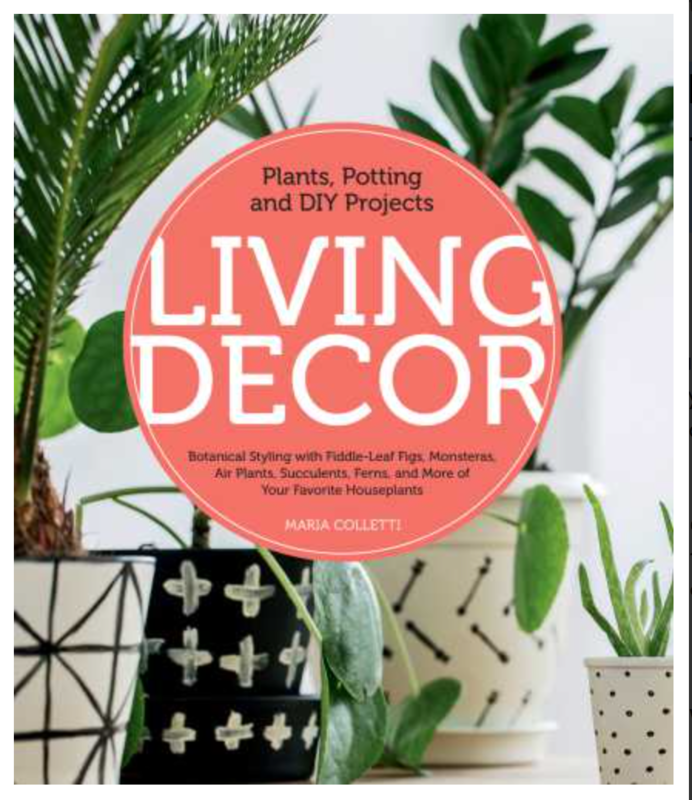 Living decor: plants, potting and DIY projects:[ Ebook ] instant Access