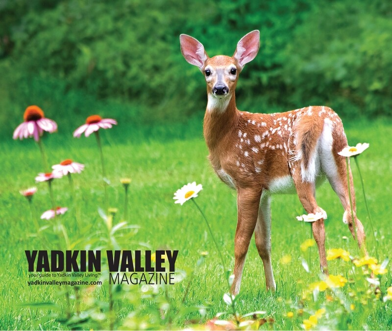 Yadkin Valley Magazine Fawn Mouse Pad