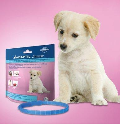 Adaptil Junior ошейник с феромонами для щенков