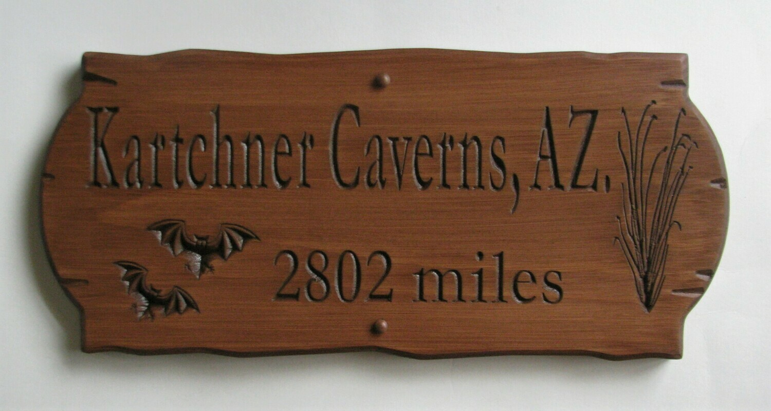 Personalized Rustic Wood Sign Cabin Sign Camp Sign Family Name Sign with Carved Graphics