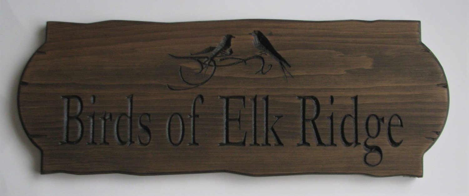 Personalized Rustic Stained Outdoor Wood Sign with Carved Birds