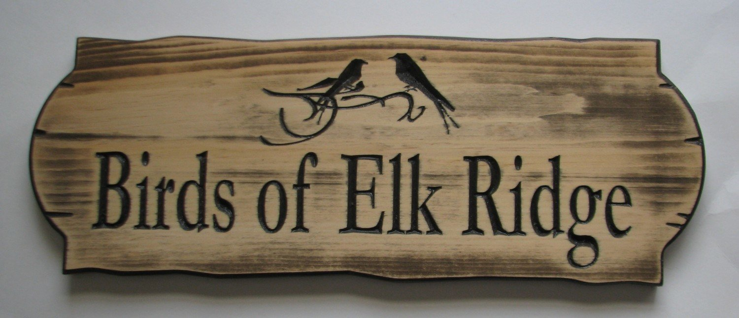 Personalized Rustic Stained Distressed Look Outdoor Wood Sign with Carved Birds
