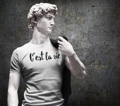 Tee shirt homme c'est la vie