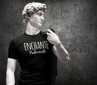 Tee shirt homme enchanté mademoiselle
