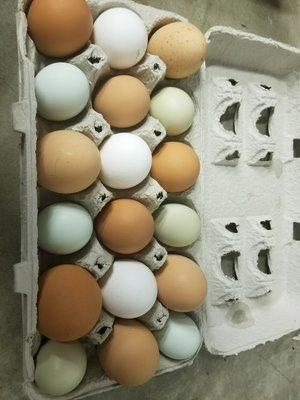 18 Farm Fresh Eggs
