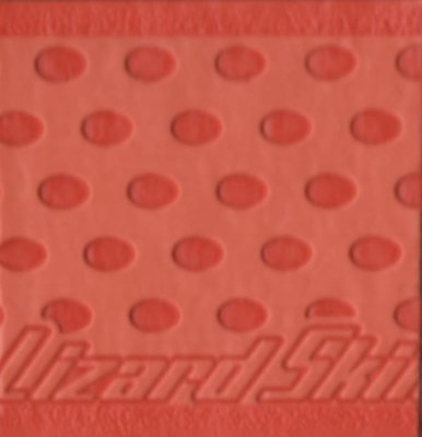 Orange Lizard Skin