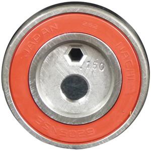 Kit C Cam and Bearing - AP48 Pumptec #356