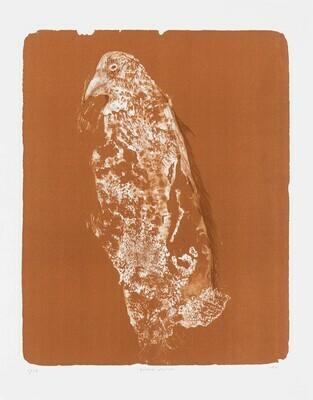 Totem Falcon (Siena) - Lithograph