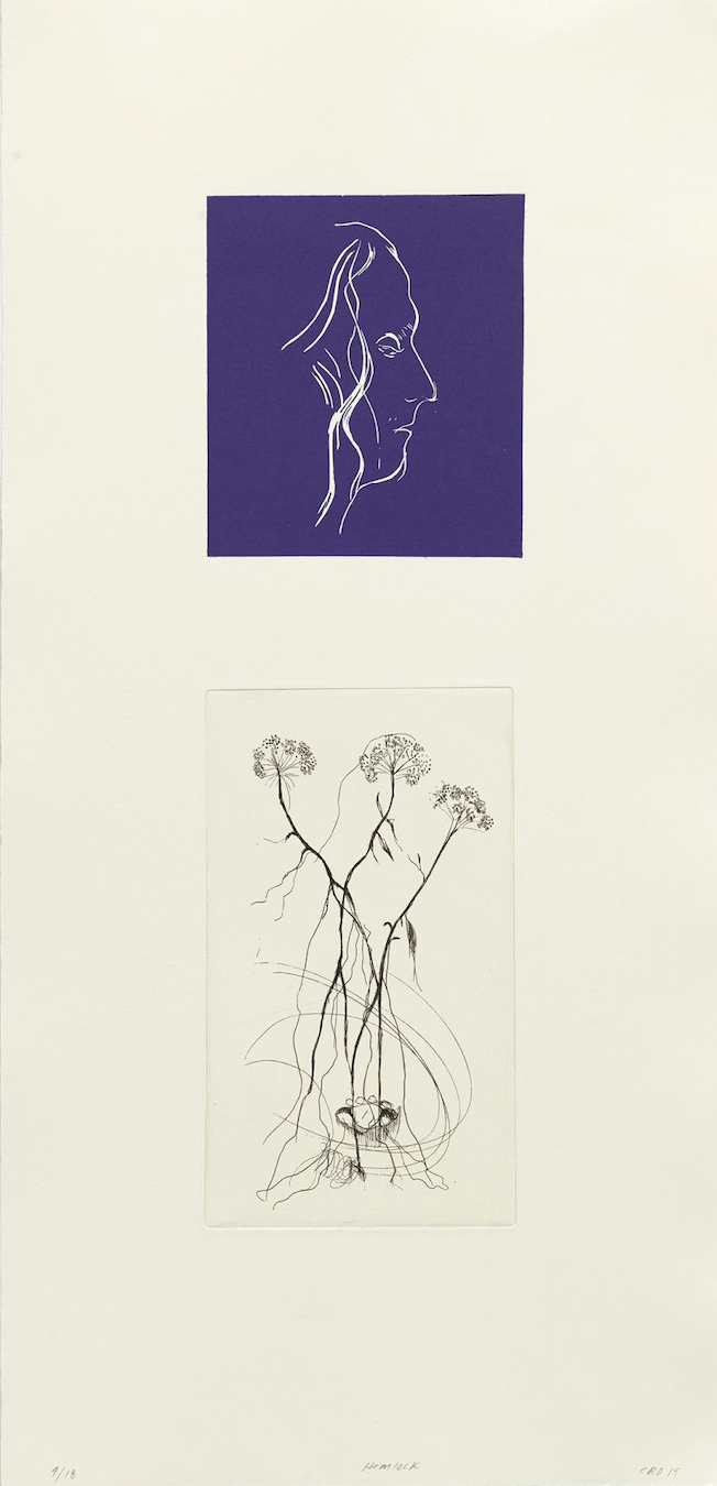 Hemlock (double) - Linocut & Line etching