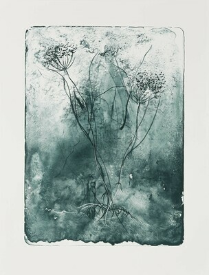 Hemlock Seed (Green) - Lithograph