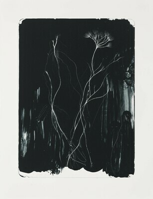 The Dwelling - Lithograph