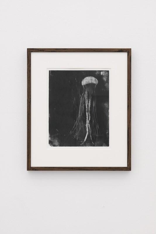 Anima Mundi - Monotype